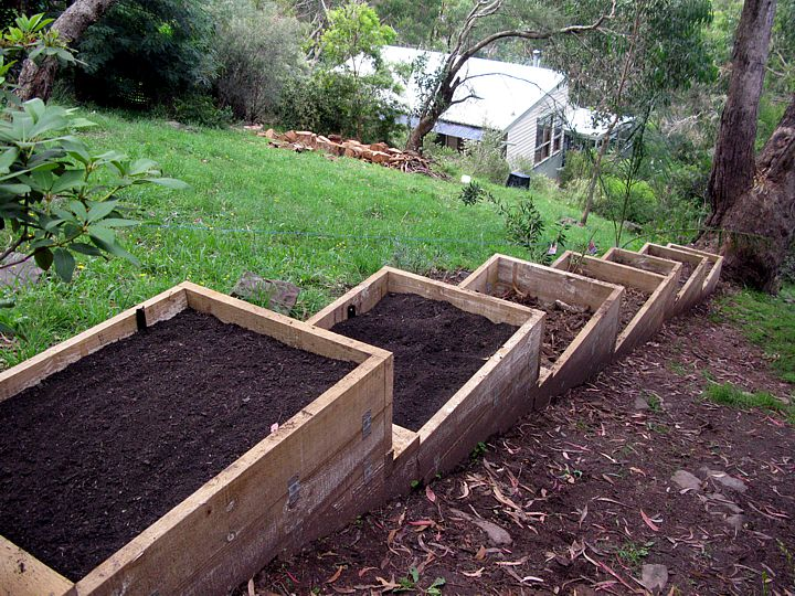 Raised Beds Incline